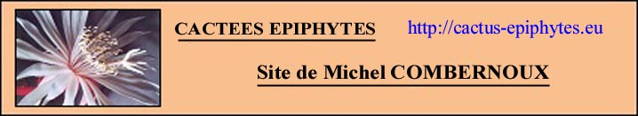 French language epiphyte site